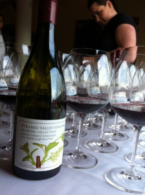 Pyrami-Valley-Ten-Mercer-Wine Dinner