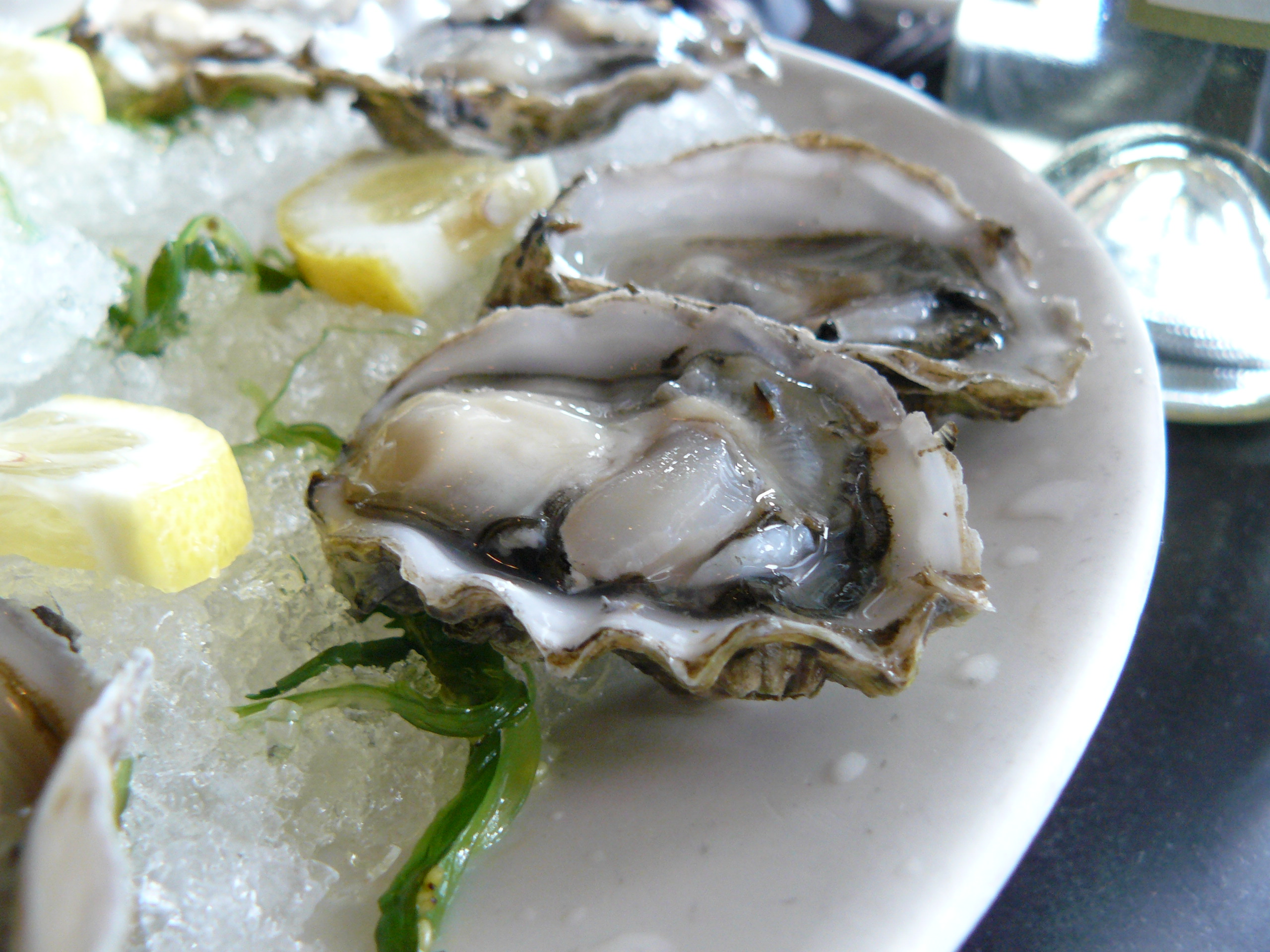 oysters and scotch