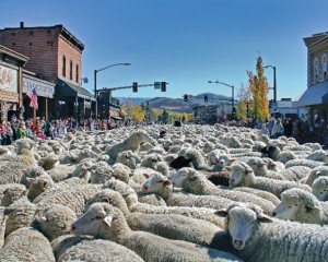 Idaho-trailing-of-the-sheep-event