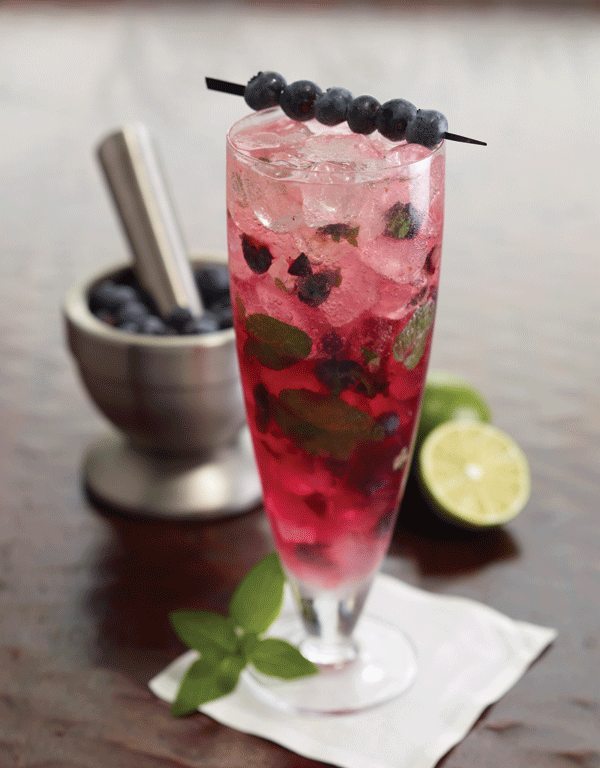 Blueberry Vodka Mojito