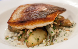 Sauteed Whitefish with Sauce Gribiche at Grass Fed.