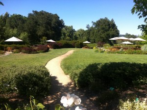 Lambert Bridge Winery picnic grounds