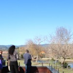 Touring-Napa-Sullivan-Estate-Winery