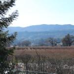 Visiting-Napa-Valley-Sullivan-Estates-Winery