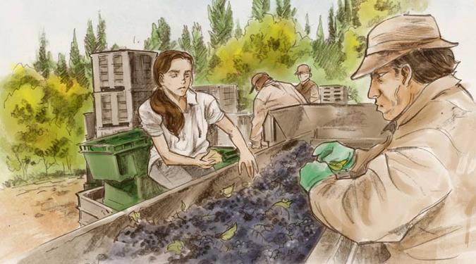 Piatelli Argentina Wine