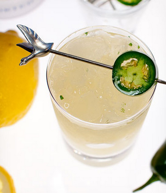 All The Kings Horses-le-melon-grey goose-vodka-recipe